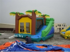 Palmboom jungle bounce house